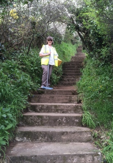 Ange and 73 steps - all clean